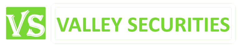Valley Securities & Services